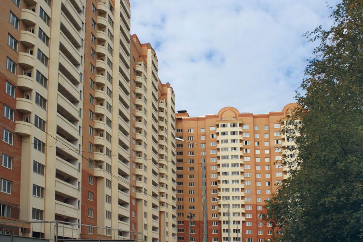 Планировка Однокомнатная квартира площадью 50.6 кв.м в ЖК «Молодежный»